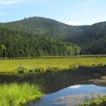 Urlaub mit Hund im Bayrischen Wald und in Tschechien – Teil 1