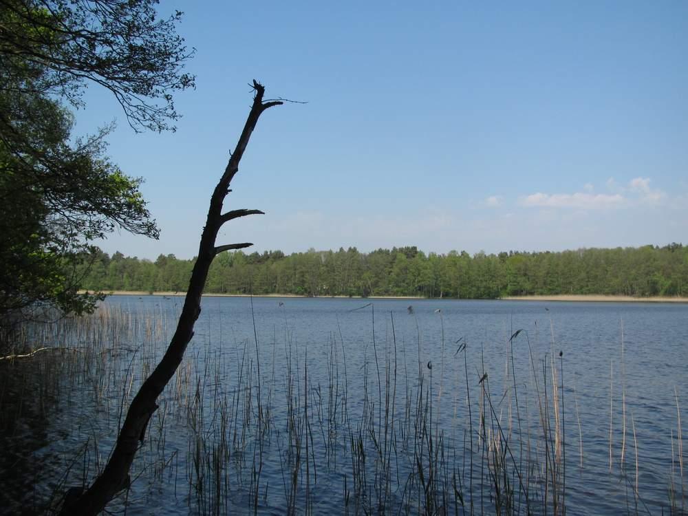 Wanderung um den Werbellinsee bei Herzberg (Mark)
