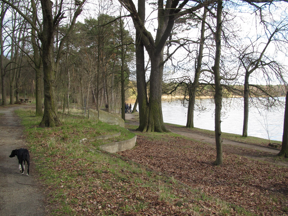 Weg am Langen See (Dahme) in Köpenick