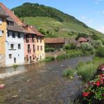 Urlaub mit Hund im Elsass – Teil 2