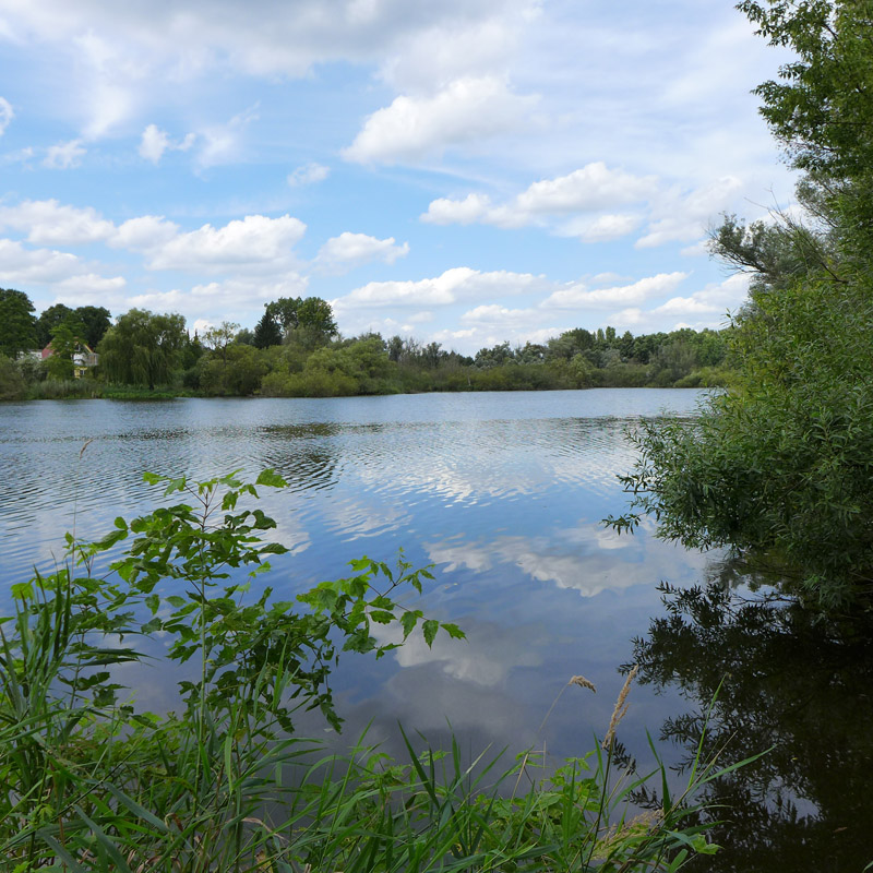 Hermsdorfer See