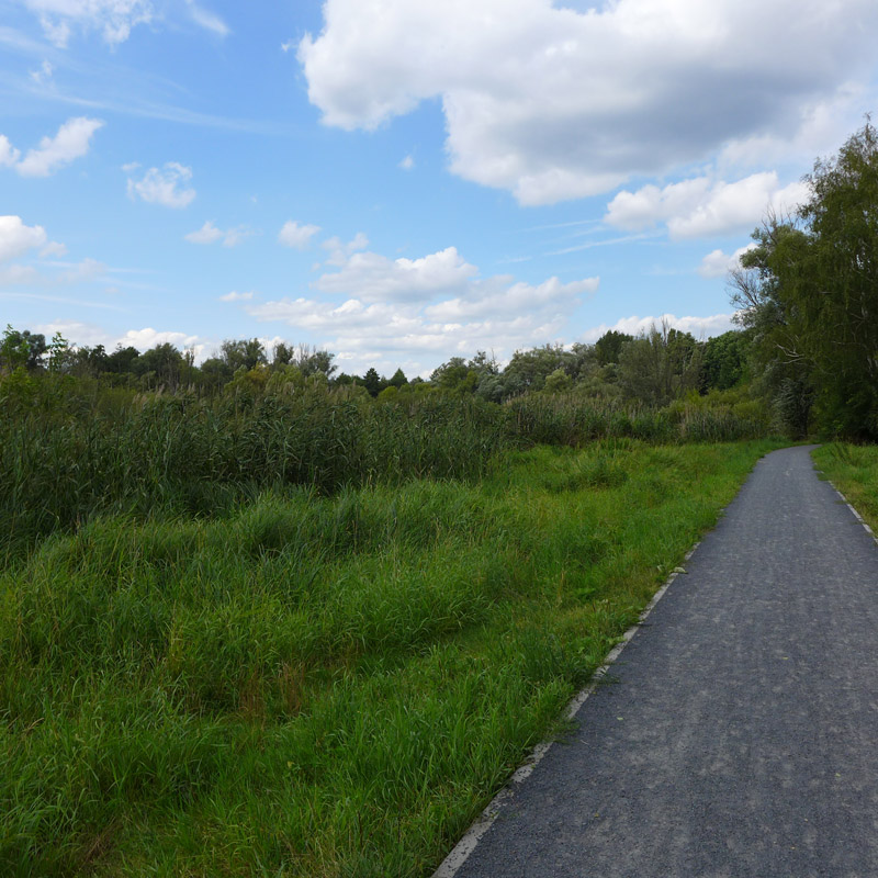 Weg entlang des Hermsdorfer Sees