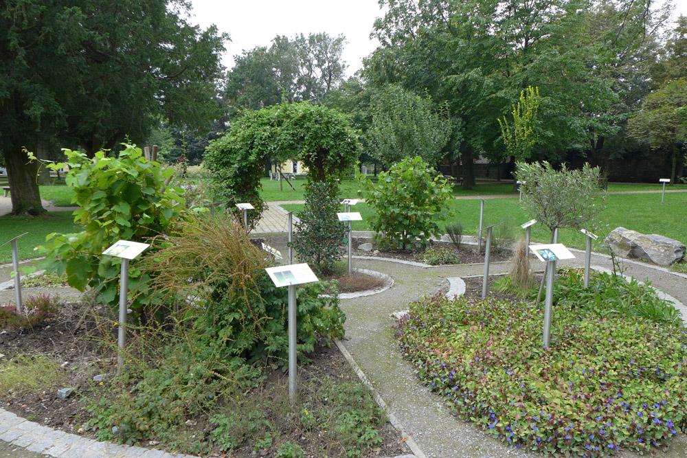 Bachblüten-Kraftpark in Rechnitz