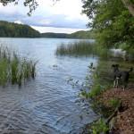 Der Liepnitzsee – Kleines Paradies nahe Berlin