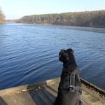 Traumhafte Wanderung um den Trebuser See