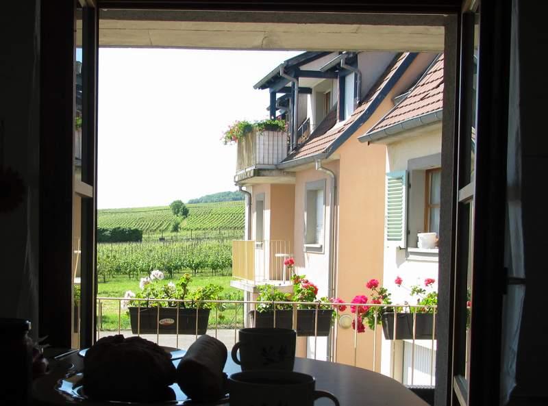 Blick aus unserer Ferienwohnung im Elsass