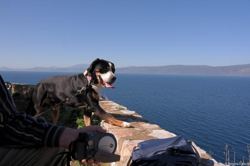 Jano auf der Insel Hydra