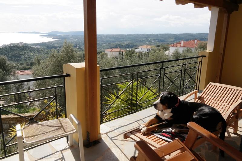 Jano auf der Terrasse in Finikonda mit tollem Ausblick