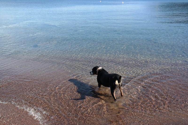 Wunderschönes Meer, aber ein Schwimmer bin ich nicht.