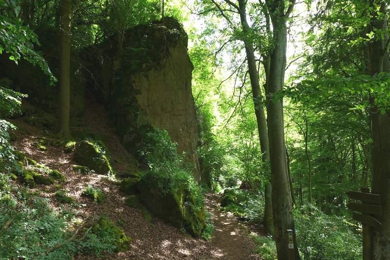 Moosbedeckte Felsen