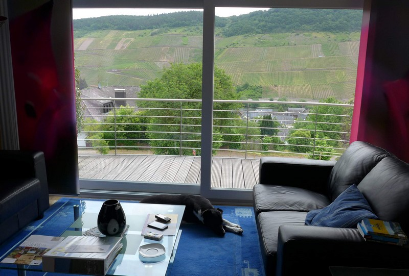 Panoramablick aus unserer Ferienwohnung