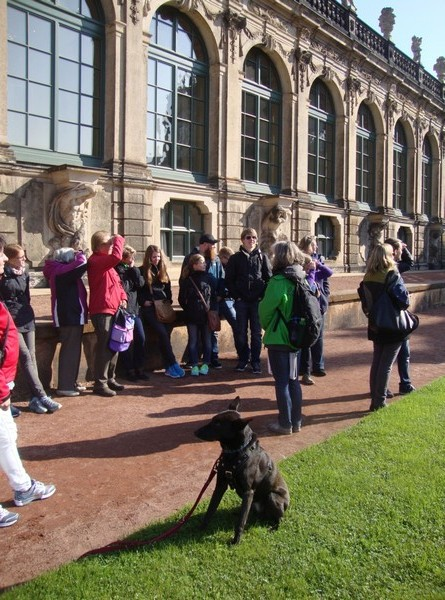 Dresden-Urlaub-mit-Hund (6)