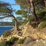Traumhafte Küstenwanderung auf der Halbinsel von St. Tropez