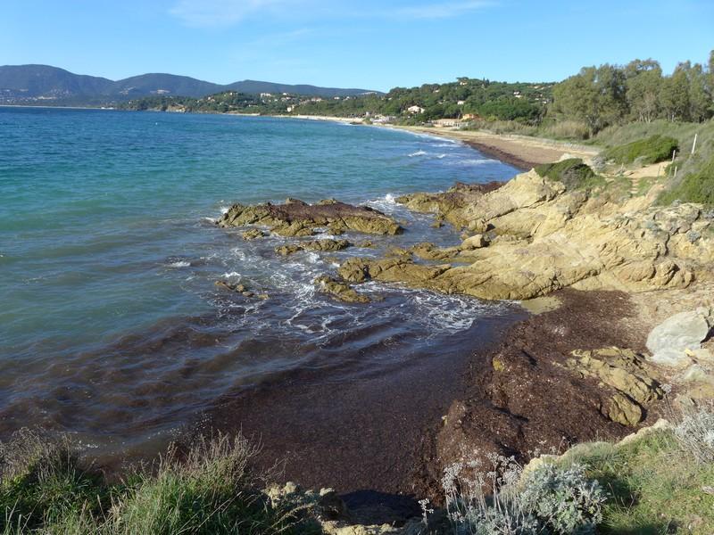 Wanderung-Halbinsel-St-Tropez-mit-Hund (2)