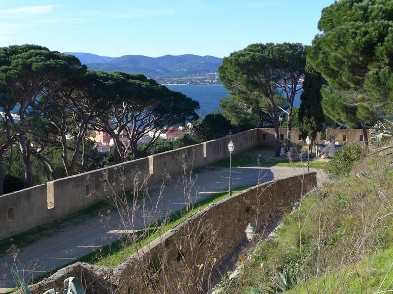 Blick von der Zitadelle auf Pinien und Meer