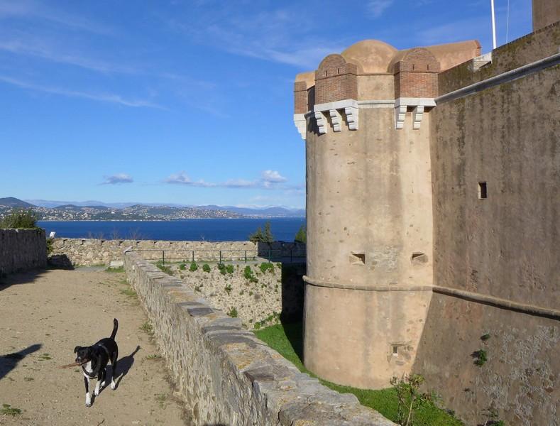 Alfa auf der Zitadelle von St.Tropez