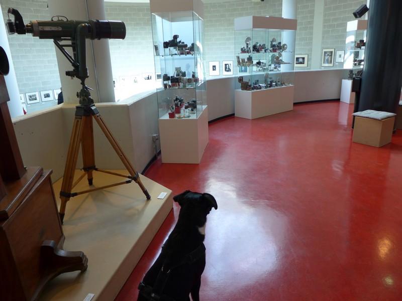 Deutsches Fotomuseum mit Hund