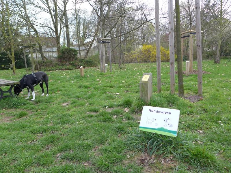Kleine Hundewiese im agra-Park