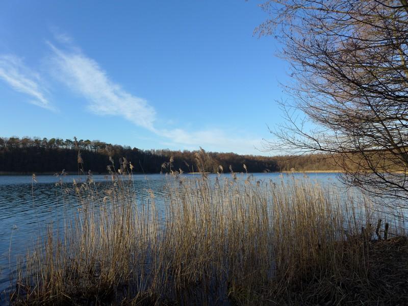 Ausflug mit Hund zum Bötzsee und Fängersee