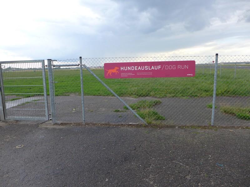 Ausflug-Hund-Berlin-Tempelhofer-Feld (18)