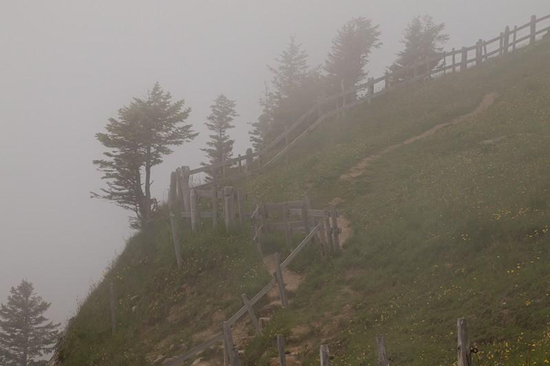 Nebel auf dem Rigi