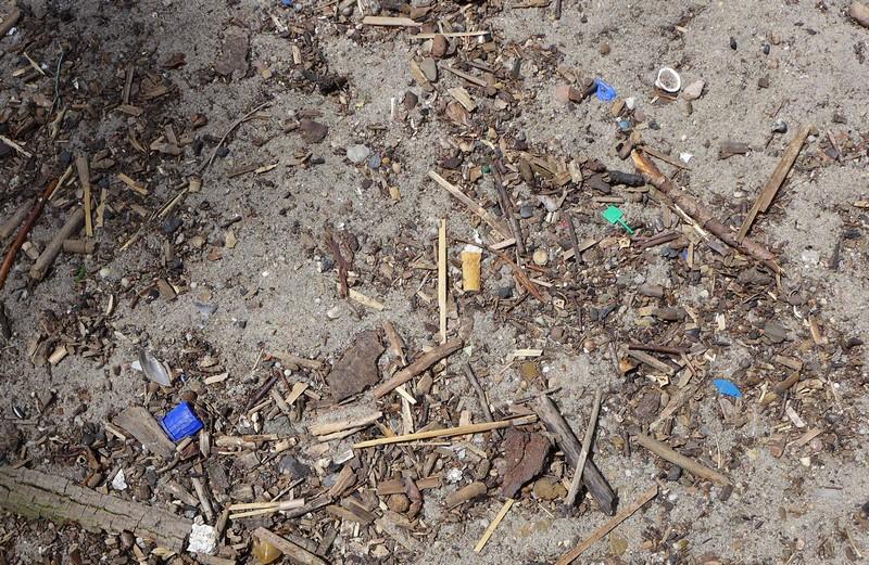 ...aber auch hier finden sich die für Seevögel besonders gefährlichen kleinen Plastikteile, Zigaretten usw.