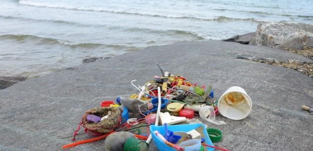 ...auch hier haben wir im Winter Plastikmüll eingesammelt