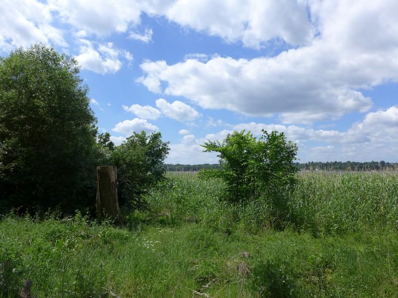 Entlang des Havel-Uferweges