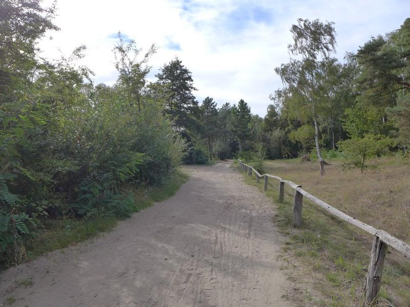 Uferweg an der Havel