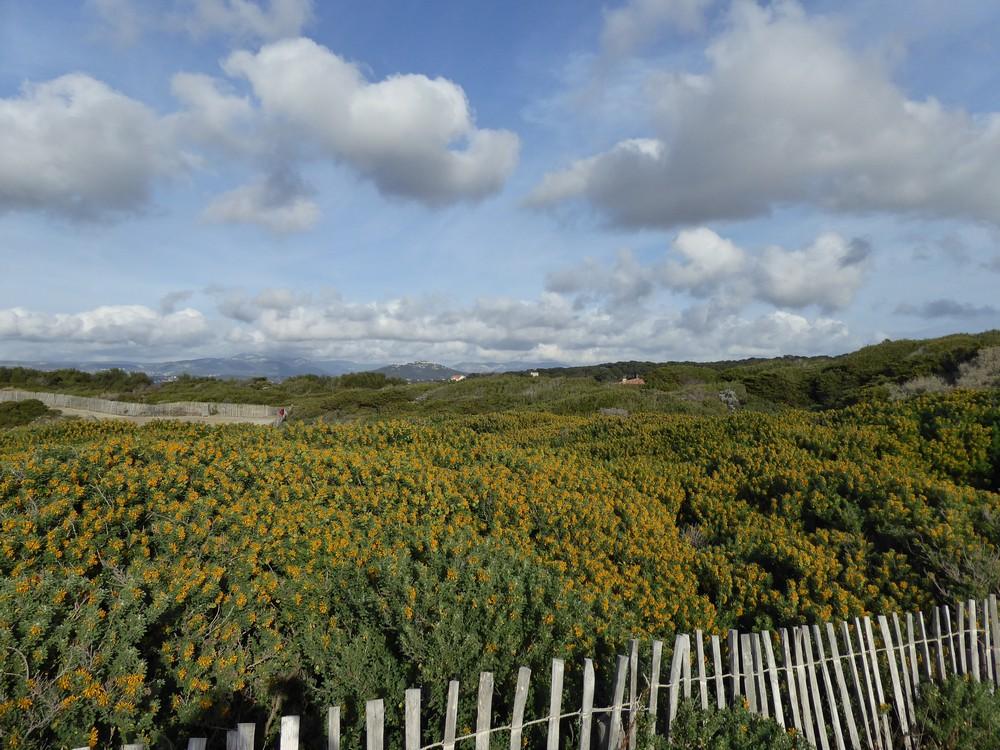 Auf der Halbinsel von Gaou