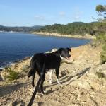 Wo im Februar schon Frühling ist – Fotos von der schönen Côte d'Azur