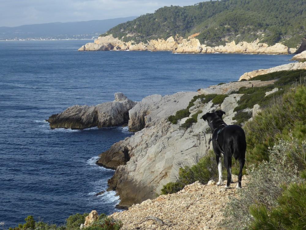 Schöne Aussicht auf dem Küstenwanderweg