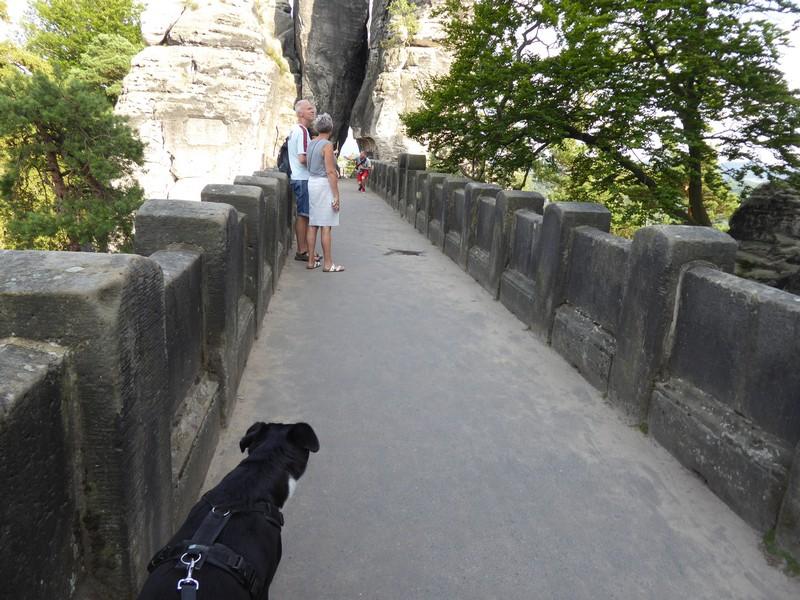 Alfa auf der Basteibrücke