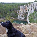 Mittelmeer, Flamingos und historische Städte – Unterwegs im Languedoc-Roussillon