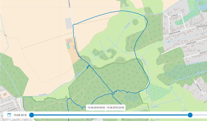 Live Tracking Aufzeichnung (blaue Linie in der Karte)