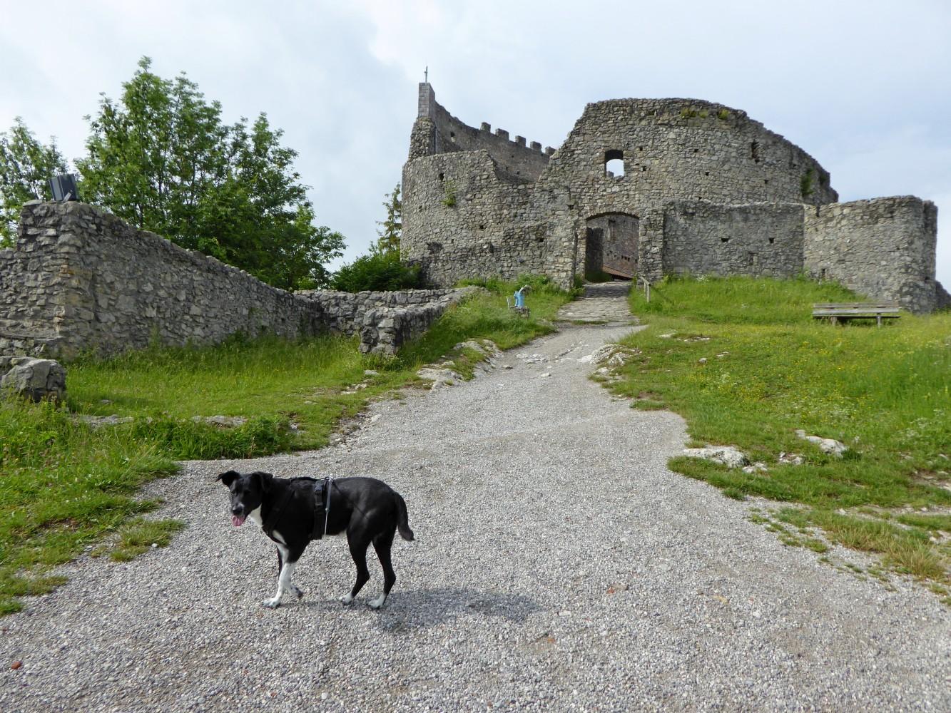 Burg Eisenberg