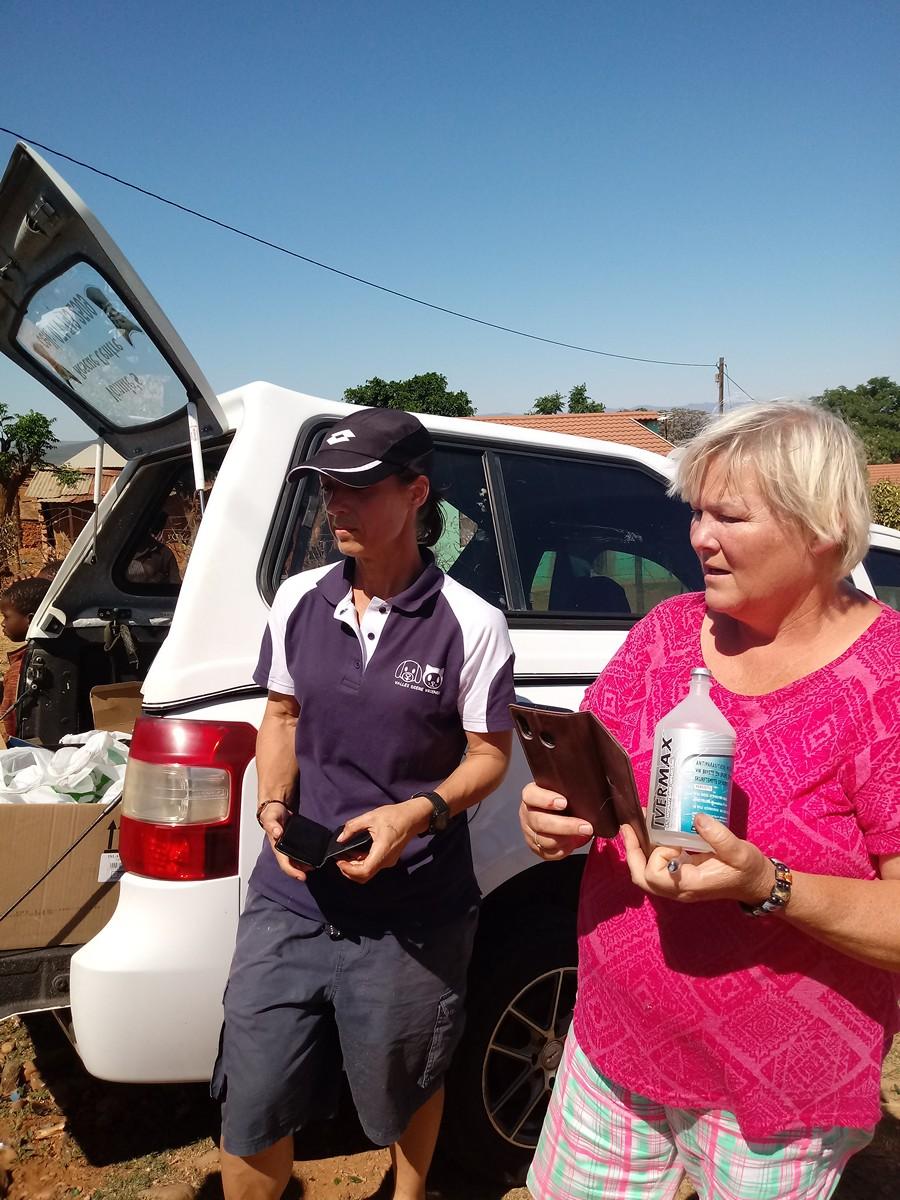 Hilfe für Hunde in Südafrika